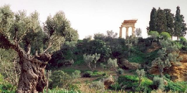 agrigento-valle-dei-templi