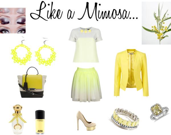 look-mimosa