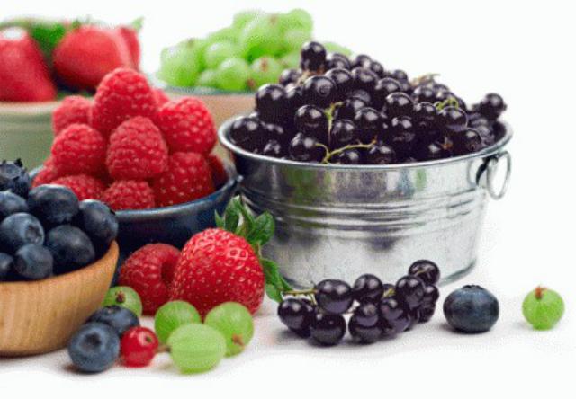 Alimenti per vivere a lungo: i frutti di bosco